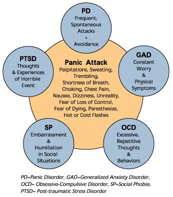 an examination of the mental status of people with generalized anxiety disorder Persons with generalized anxiety disorder (gad) often feel worried and anxious these feelings are not confined to a specific time or situation, but occur throughout the day gad can be an intense emotional state, which interrupts a person's day-to-day activities it affects both women and men.